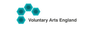 Voluntary Arts England