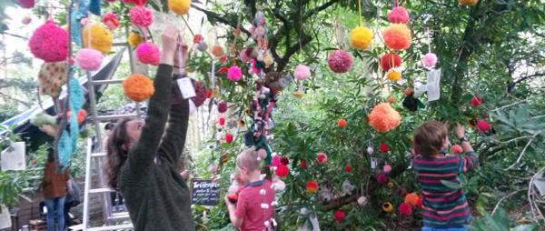 Grow your own Woollen Woods